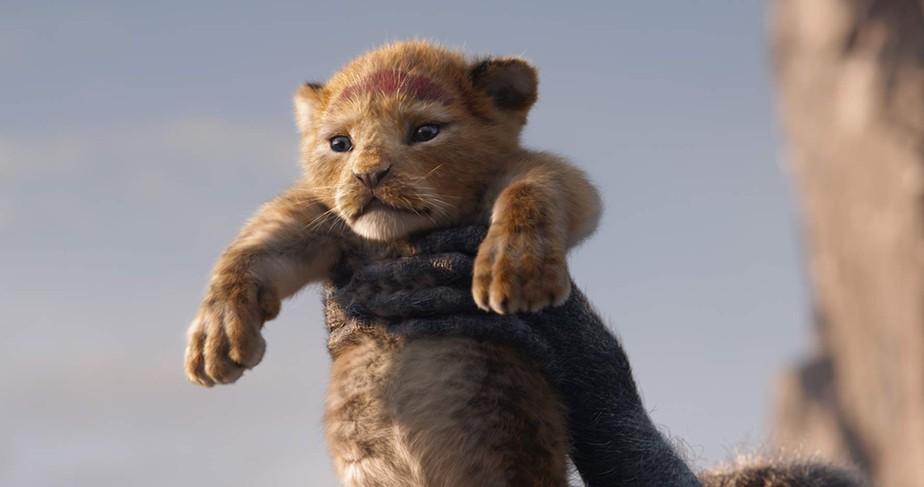 """Como vivem os animais de """"O Rei Leão"""" na vida real?"""