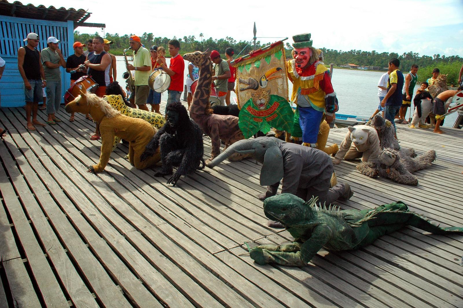 Carnaval também combina com conservação e sustentabilidade?