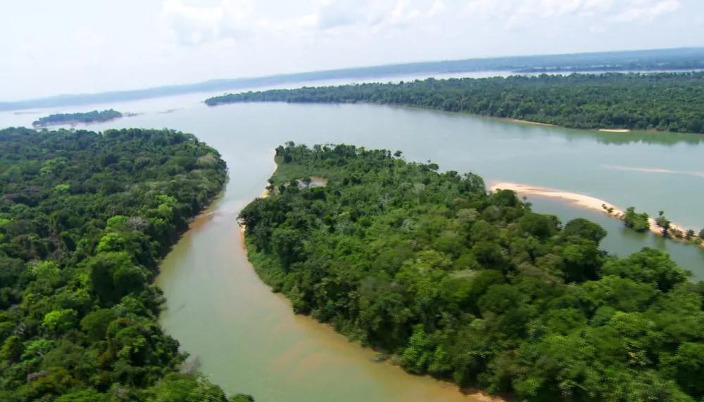 5 de setembro: Dia da Amazônia